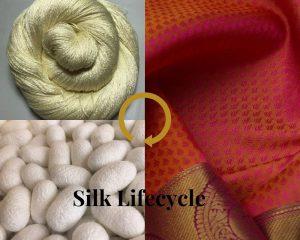 All about Silk-Origin | Types | Silk Sarees